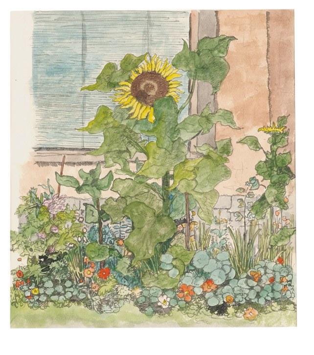 Sonnenblumen.jpg/@@images/image/large